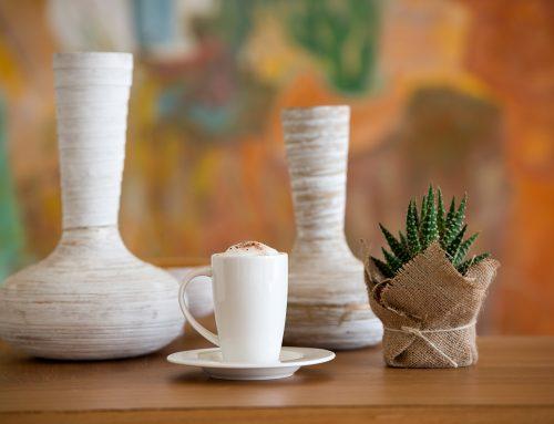 Cactus Teras